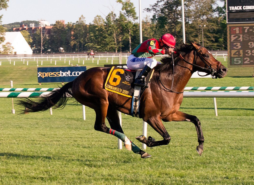 Breeder Albert Coppola's One Go All Go captured the Grade 2 Commonwealth Derby last fall at Laurel. Photo by Jim McCue.