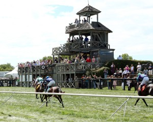 Horses approach the finish line at Great Meadow. The Virginia Gold Cup on May 7th will feature several flat races.