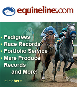 Horse Pedigrees, Records, Portfolios