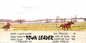 """Town Leader, a 5 year old daughter of Proud Citizen, won a claiming race at Laurel March 18th and has four """"in the money"""" finishes in four starts this year."""