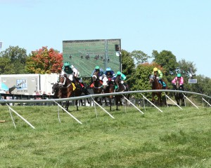 A combination of steeplechase and flat races will take center stage on the Virginia Gold Cup card Saturday May 7th. Photo courtesy of Coady Photography.