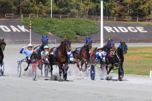Harness racing, which was held at Oak Ridge last fall, moves to a permanent home this fall at the Shenandoah County Fairgrounds in Woodstock.