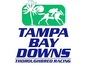Tampa Bay Downs has been friendly to Special Envoy