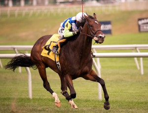 Exaggerated wins the 2015 Oakley Stakes. Photo by Jim McCue.