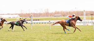 Just Funnin' Ya earned her 5th career triumph Sunday. Photo by Jim McCue.
