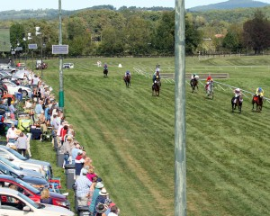 Over 70,000 fans are expected for the Virginia Gold Cup Races on May 7th.