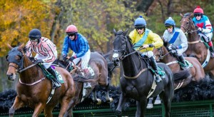Steeplechase racing attracts 25,000 spectators to Foxfield.