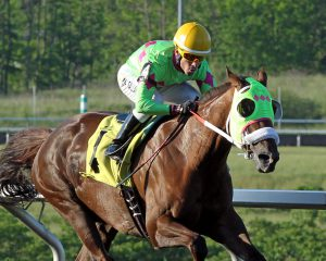 Disco Barbie, owned by Diane Manning, scored in a $33,000 allowance race Monday at Presque Isle.