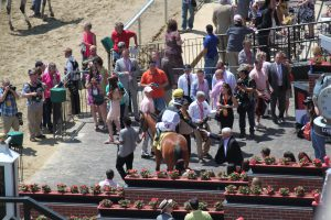 Larry Johnson's Do What I Say is shown in the winner's circle at Pimlico on Preakness Day. Photo by Nick Hahn