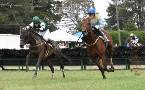 Ivy Mills won the award for top Virginia-bred Over Fences