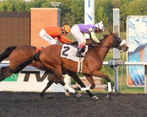 Pauper's Queen earned her 8th lifetime victory May 22nd at Presque Isle. Photo by Coady Photography.