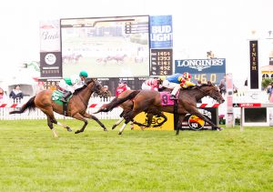 Queen Caroline won by a neck on Preakness Day at Pimlico (photo by Jim McCue)