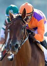 Beholder was best in  the Grade 1 Vanity Stakes on Saturday. Courtesy of Benoit Photography.