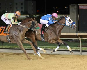 Frankin Storm, bred by Susan Minor, won a 7 furlong race at Charles Town June 1. Photo from Coady Photography.