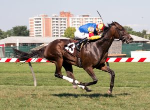 Queen Caroline, bred by the Morgan's Ford Farm, captured Saturday's $60,000 Nellie Mae Cox Stakes.