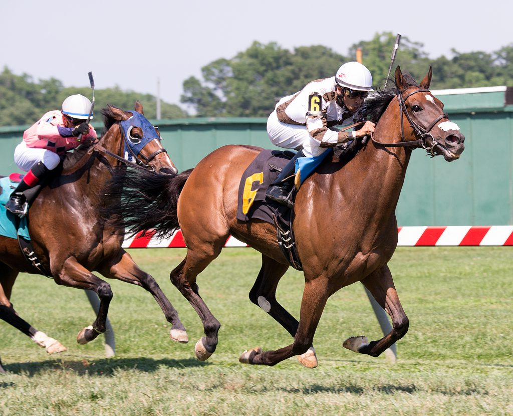 Two Notch Road upset Exaggerated in the June 25th White Oak Farm Stakes. Photo by Jim McCue.