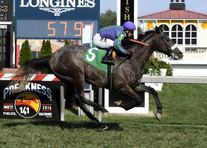Early Grey captured a $30,000 Virginia-maiden race this past Saturday at Pimlico. Photo by Jim McCue.
