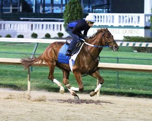 Gun Runner, 3rd in the Kentucky Derby, is favored in Saturday's Matt Winn Stakes. photo from Coady Photography.