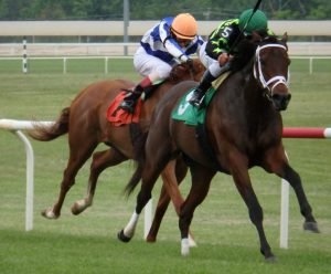 Sweet Victory captures the $200,000 Penn Oaks Saturday at Penn National. Photo from The Racing Biz.