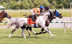 Available (#7) lost by a neck to Thirteenth Avenue but was placed first after a DQ. Photo by Jim McCue.