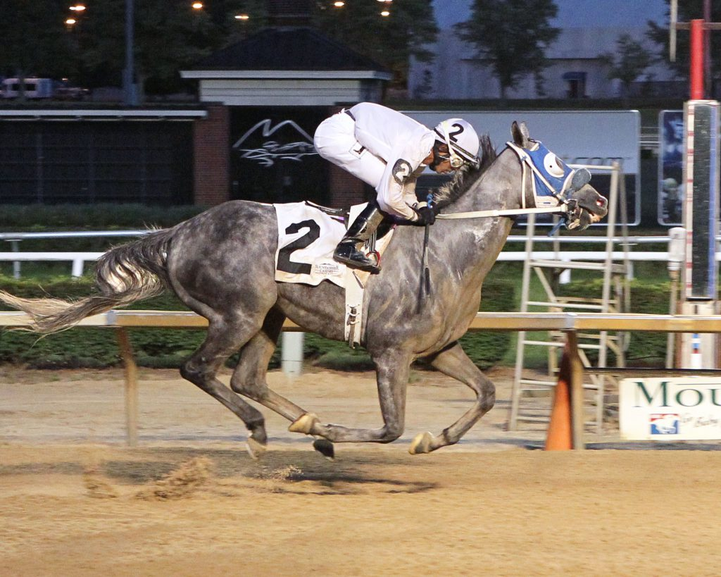 Explore cruised to a 5 length win July 18th at Mountaineer Park, his first of a recent hat trick of  wins. Photo by Coady Photography.