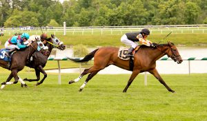 Edgar Prado directs Porte Cochere to victory July 3rd at Laurel. Photo by Jim McCue.