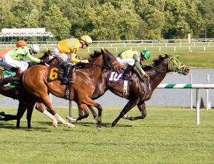Rebellious Warrior defeated Path Dependent by a neck July 10 at Laurel. Photo by Jim McCue.