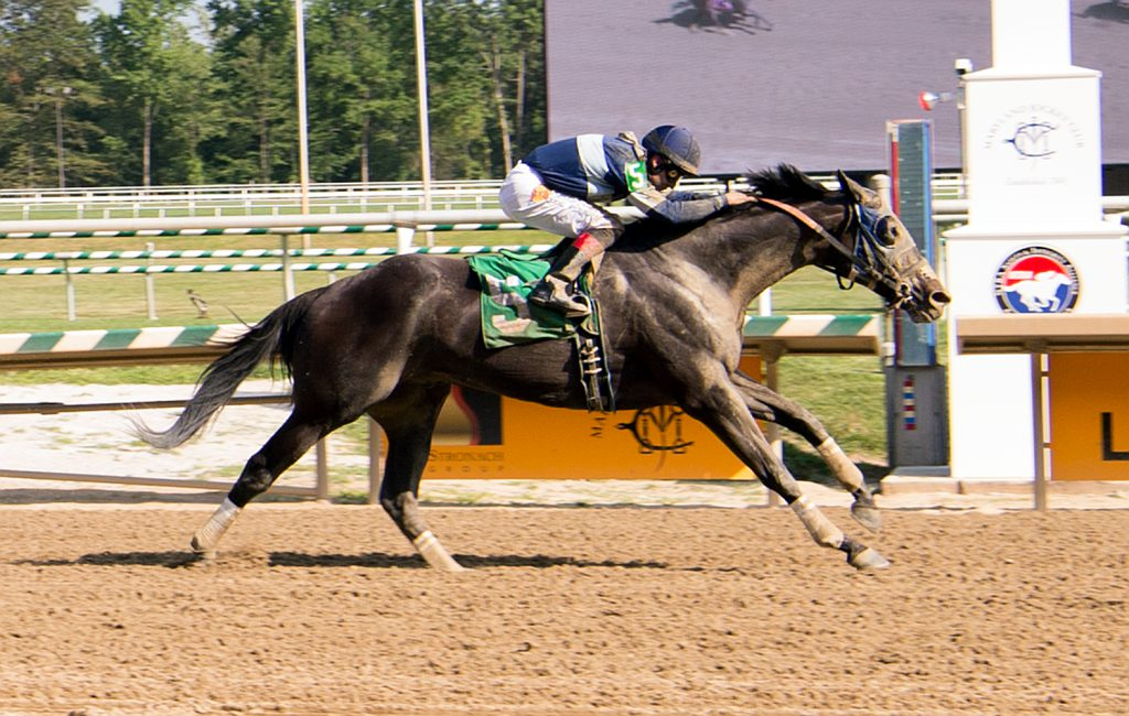 Service For Ten's upset win at Laurel July 24th gave owner Mark Lapidus, LLC a 25% bonus. Photo by Jim McCue.
