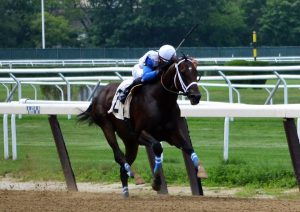 Sticksstatelydude got his 2nd career win July 15 at Belmont. Photo by Pack Pride Racing.