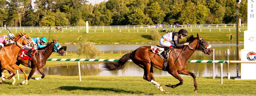 Mr. Magician, bred and owned by Larry Johnson, beat 11 other horses in a waiver claiming sprint at Laurel August 19th. Photo by Jim McCue.
