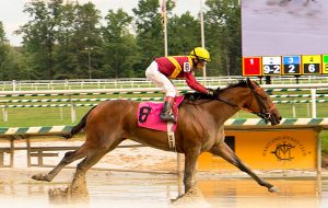 Porte Cochere wins a $28,000 starter optional claimer at Laurel August 12. Photo courtesy of Jim McCue.
