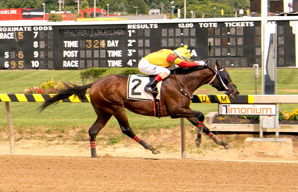 CB Bodemester broke his maiden September 2nd at Timonium. He will compete in the Jamestown Stakes Saturday. Photo by Jim McCue.