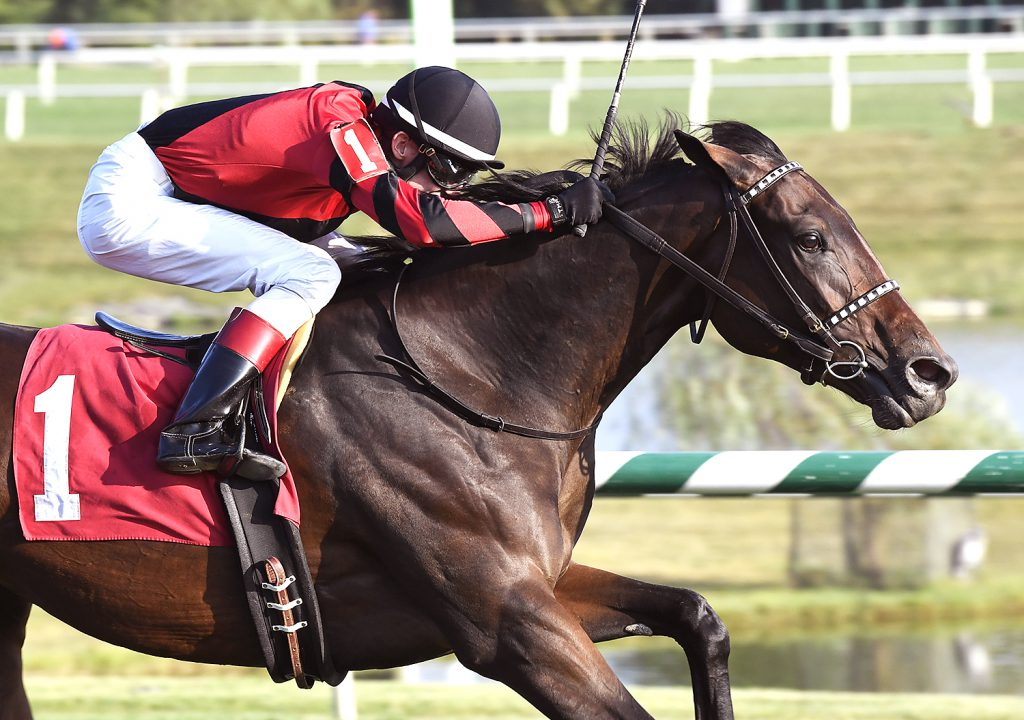 Rapid Rhythm prevailed by 1 1/2 lengths in the $60,000 Oakley Stakes Sept. 24 at Laurel. Photo by Jim McCue.