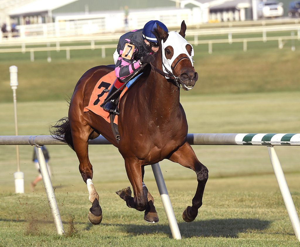 Rose Brier won his 4th straight Virginia-bred stakes race by capturing the Bert Allen Stakes Sept. 24th at Laurel. Photo by Jim McCue.
