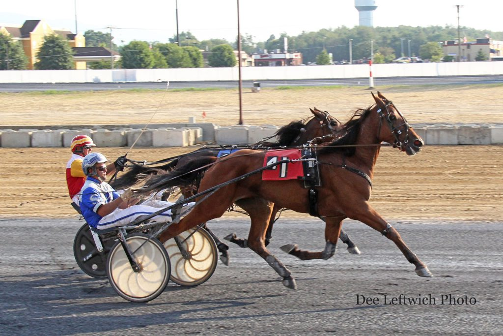 After a thrilling battle with Elton J in the final quarter, Speedy Taxi prevailed by a neck in the 3 Year Old Colt/Gelding Trot. Photo by Dee Leftwich.