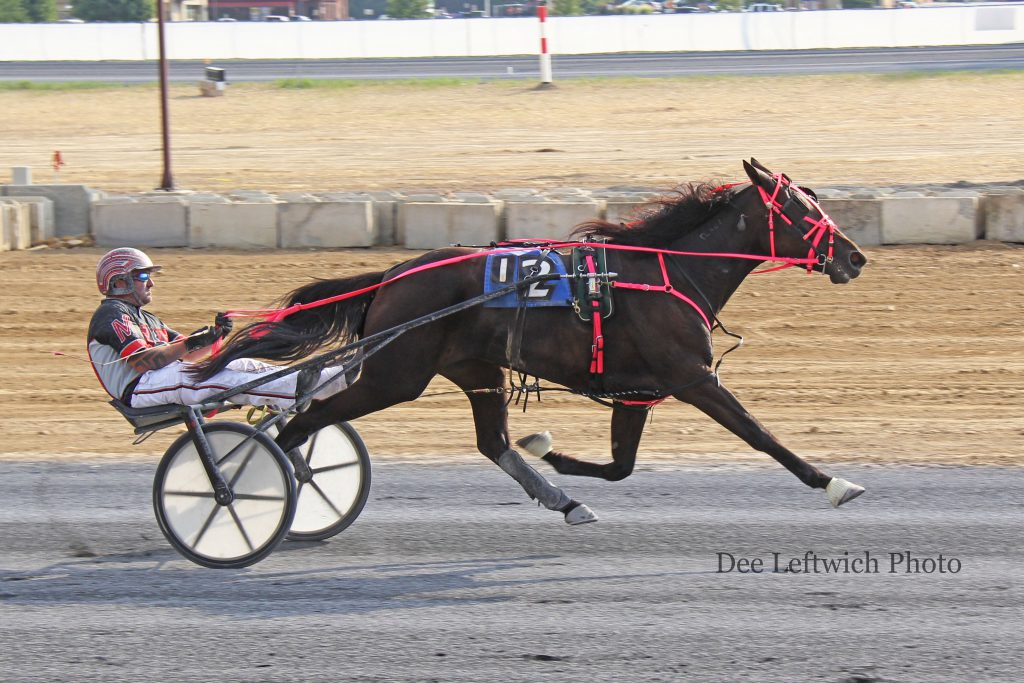 Debbie's Peanut got her first career win at Shenandoah's opening day in the $40,000 3 Year Old Filly Trot.