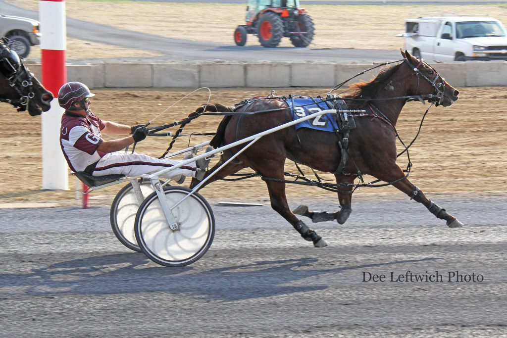 Motel Molly's move in mid-stretch gave owner, trainer and driver Mark Gray a deserved follow up Breeder's win after his filly won the 2 year old title in 2015. Photo by Dee Leftwich.