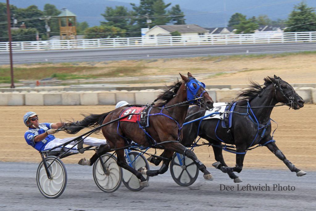 Beautiful Artist collected the fastest mile of any of the eleven winners Sunday at Shenandoah Downs. Photo by Dee Leftwich.