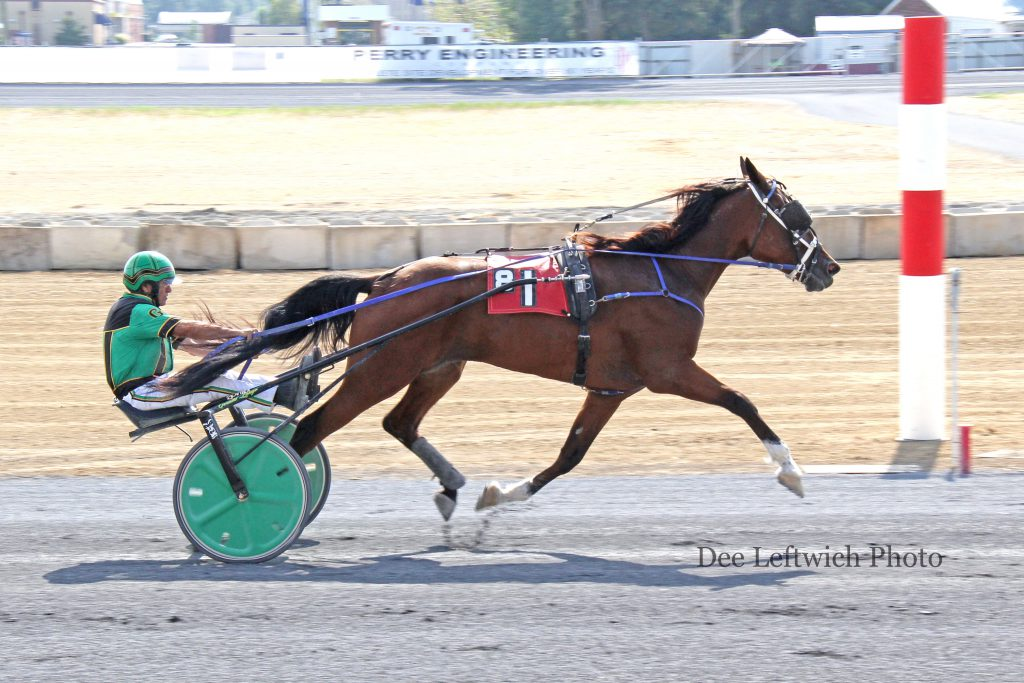 Explosive Muscles earned his 22nd career win Saturday at Shenandoah Downs. Photo courtesy of Dee Leftwich.