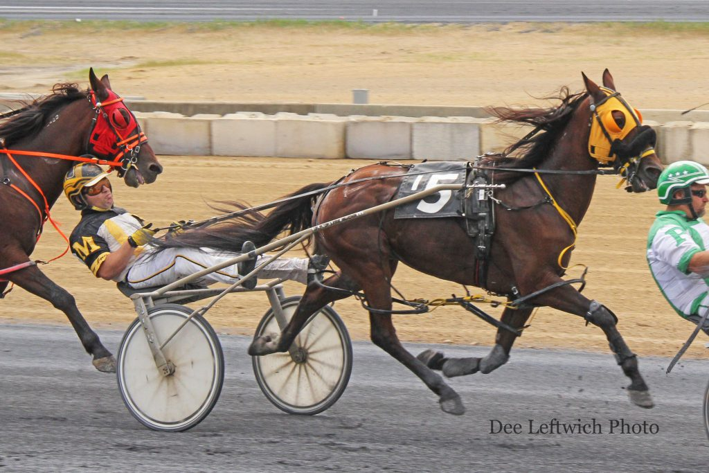 14 year old Expresso Forte won his first race of the year via disqualification Saturday. Photo by Dee Leftwich.