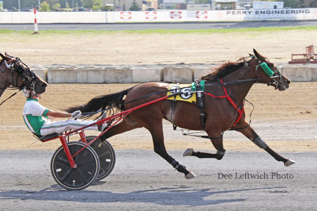 Mistress Valentine captured Saturday's $8,000 featured Open Handicap trot at Shenandoah Downs. photo by Dee Leftwich.
