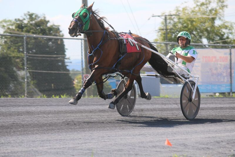 Chuck Perry directs Vertigo Hanover to his first of two wins on Wednesday's County Fair race program Wednesday.