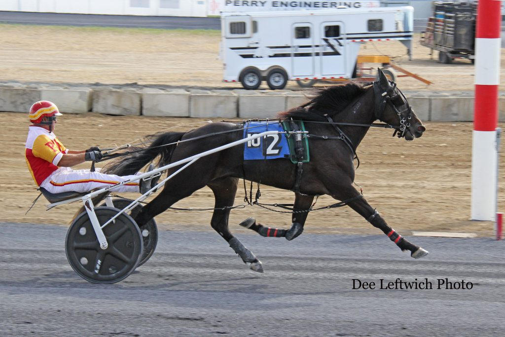 Dusty Fool captured Sunday's $42,050 2 Year Old Colt & Gelding Trot with trainer/driver Carlo Poliseno in the bike. Photo by Dee Leftwich.