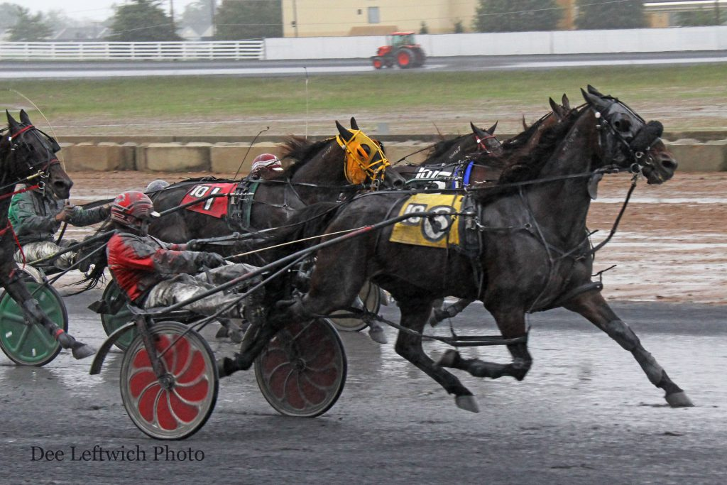 Roger Plante Jr. directs #6 Igotyourcrazy to a come from behind win victory Saturday. Photo by Dee Leftwich.