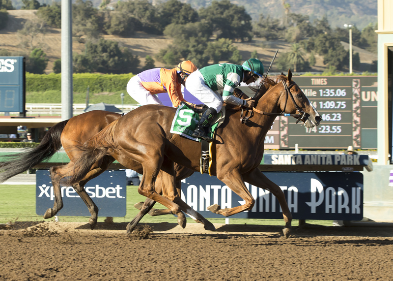 StellarWind and Victor Espinoza, left, hold off Beholder and Gary Stevens to win the Grade I $300,000 Zenyatta Stakes Saturday, Oct. 1, 2016 at Santa Anita Park, Arcadia, CA.  ©Benoit Photo