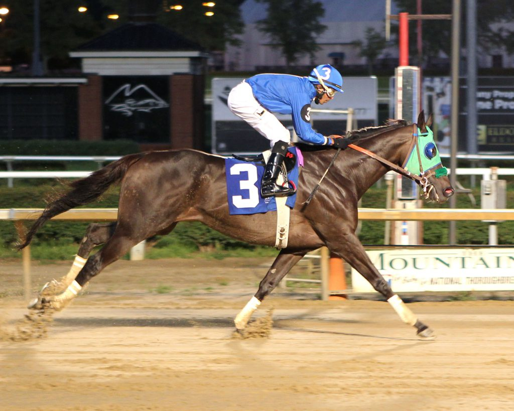 Titan Alexander, bred by Mrs. C. Oliver Iselin, III, will compete in Saturday's $150,000 Maryland Million Classic Stakes. Photo by Coady Photography.