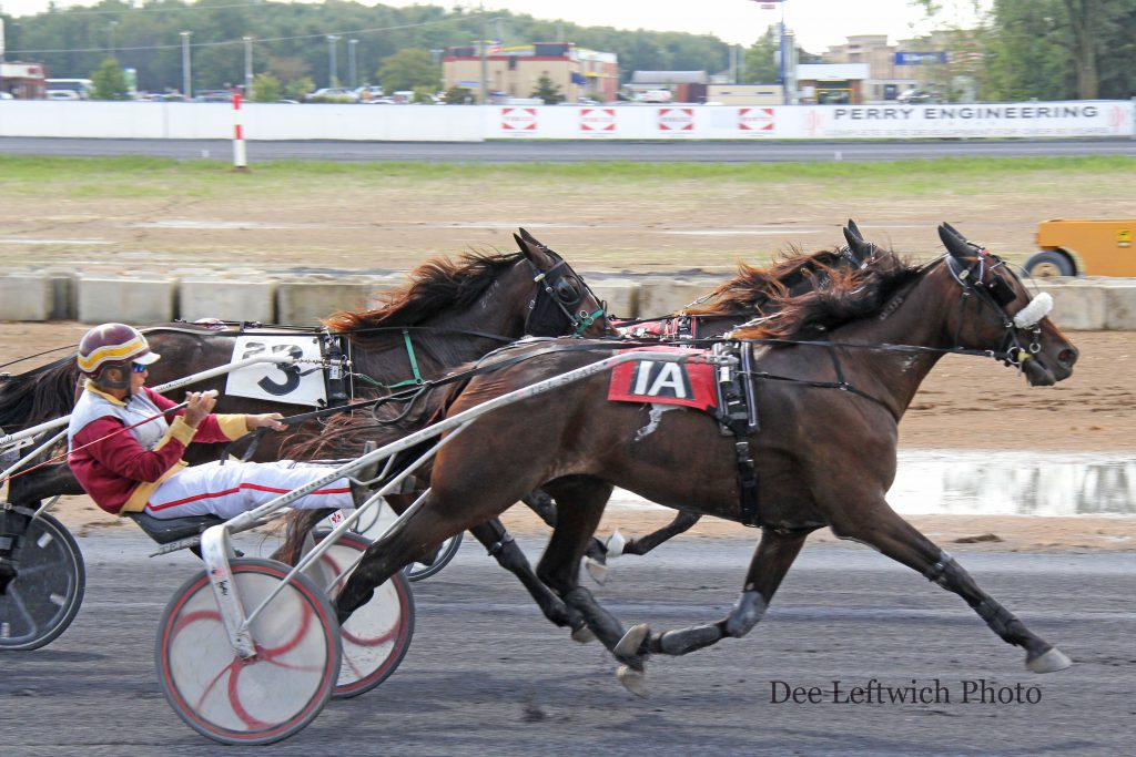 Betsy Brown was in the sulky for her own horse, Calcutta, who came on strong outside to win on Sunday Oct. 2. Photo by Dee Leftwich.