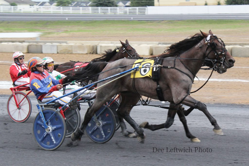 Silver Sierra rebounded from a second place finish in the feature a week ago to win Saturday. Photo by Dee Leftwich.