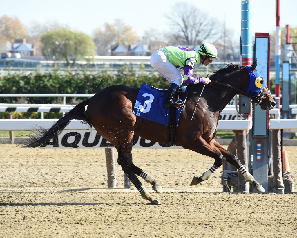 River Date's 10 1/2 length win November 18th at Aqueduct was abnormal among a string of recent tight finishes. Photo by Adam Coglianese.
