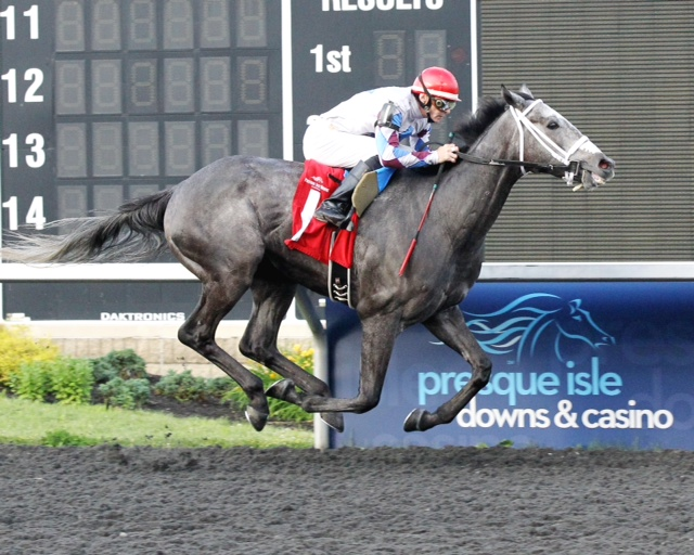 LVR Stable, Inc. earned four VA bred owner's bonuses at Mountaineer in 2016.